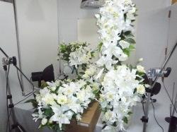 スタジオと花