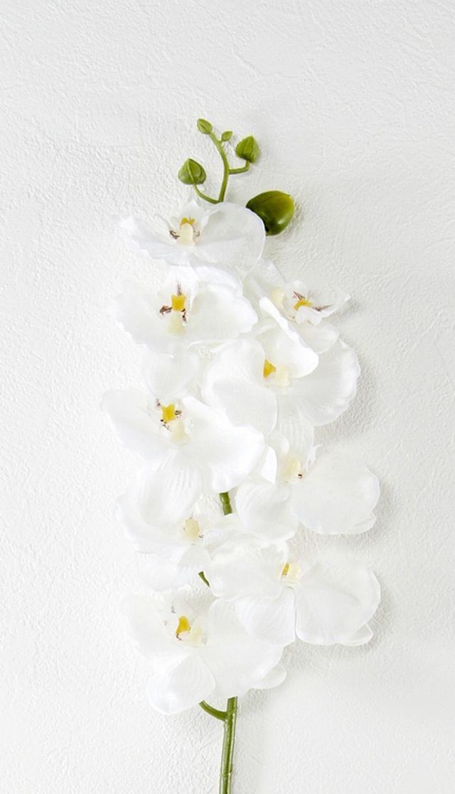 【造花・アートフラワー・シルクフラワー】オーキッド・胡蝶蘭(ホワイト)
